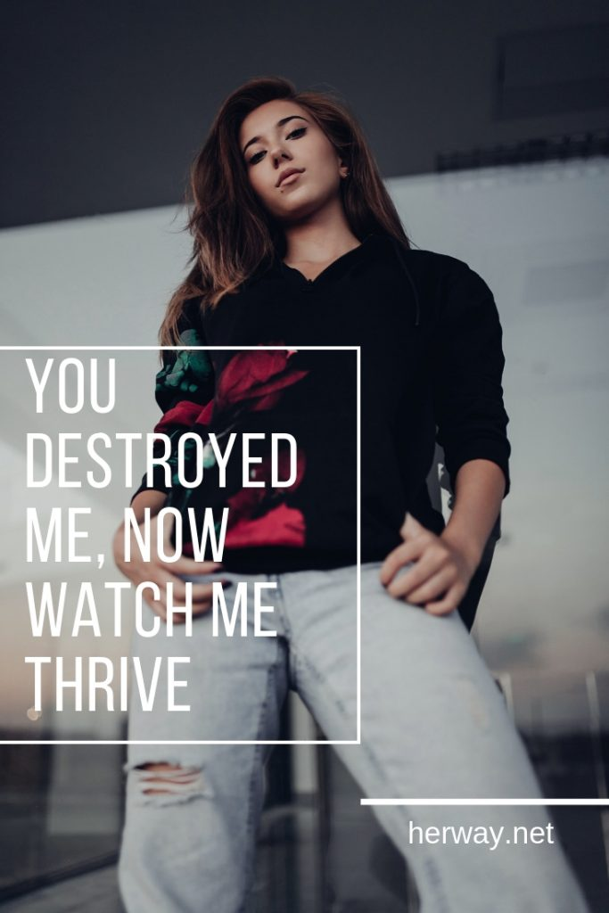 You Destroyed Me, Now Watch Me Thrive