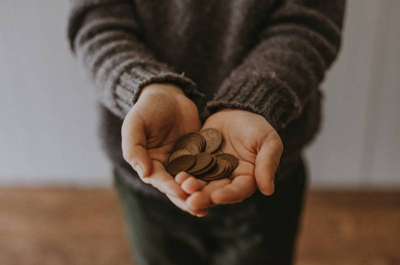 person's hands holding coins