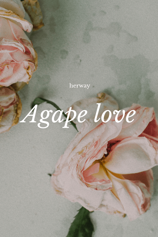 roses with text agape love