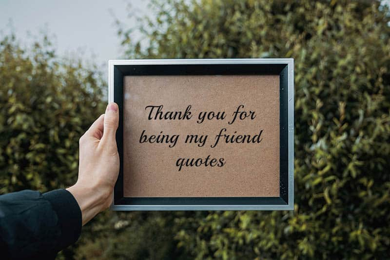 Thank you for being my friend quotes: