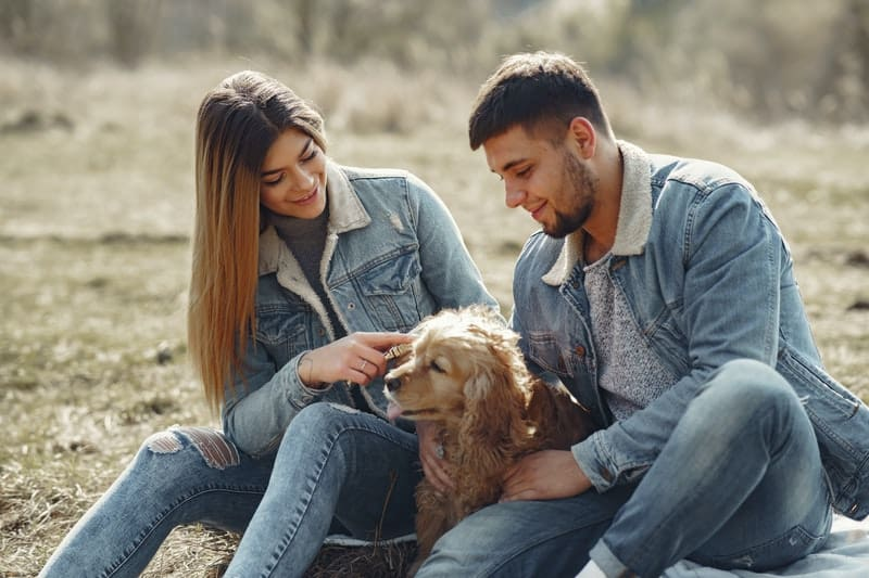 couple playing with dog