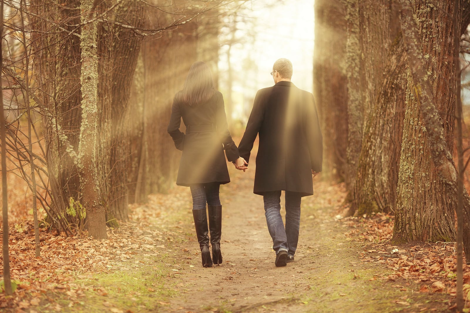 couple holding hands while walking in park