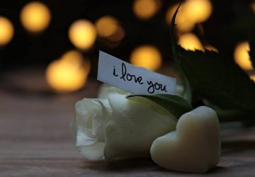 i love you sing on white roses