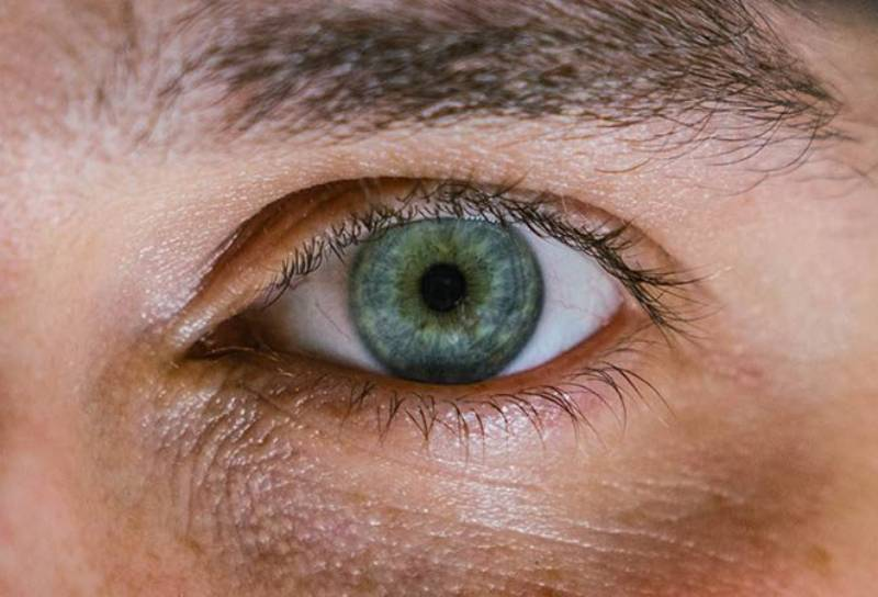 close up photo of persons eye