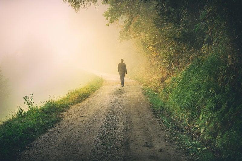 man walking in the wood