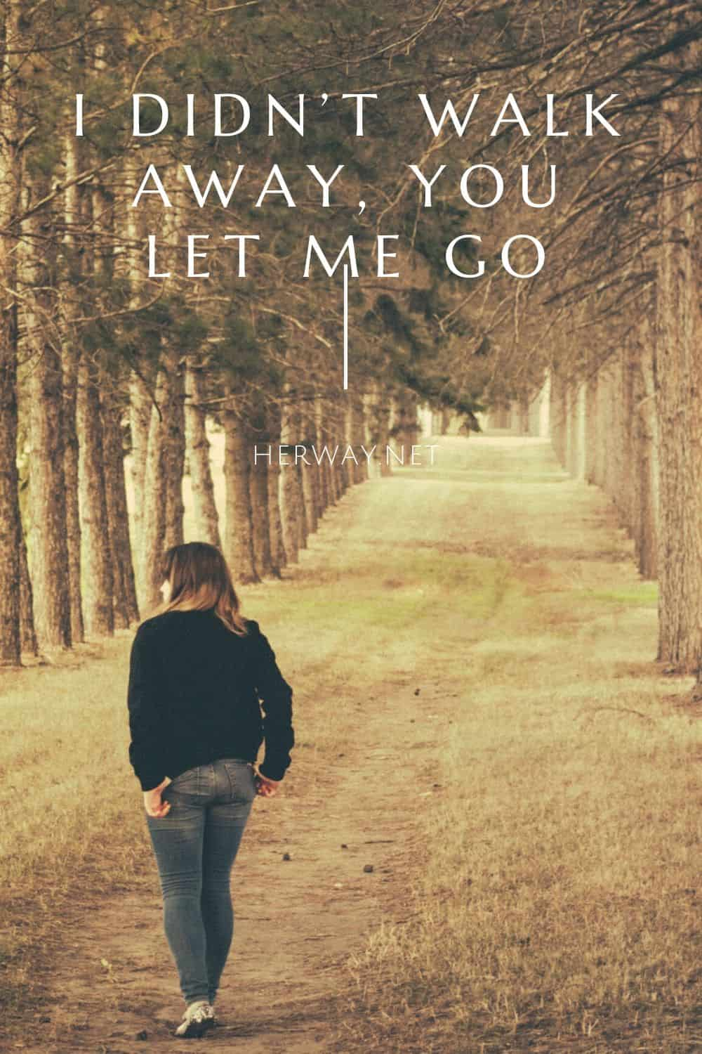 I Didn't Walk Away, You Let Me Go