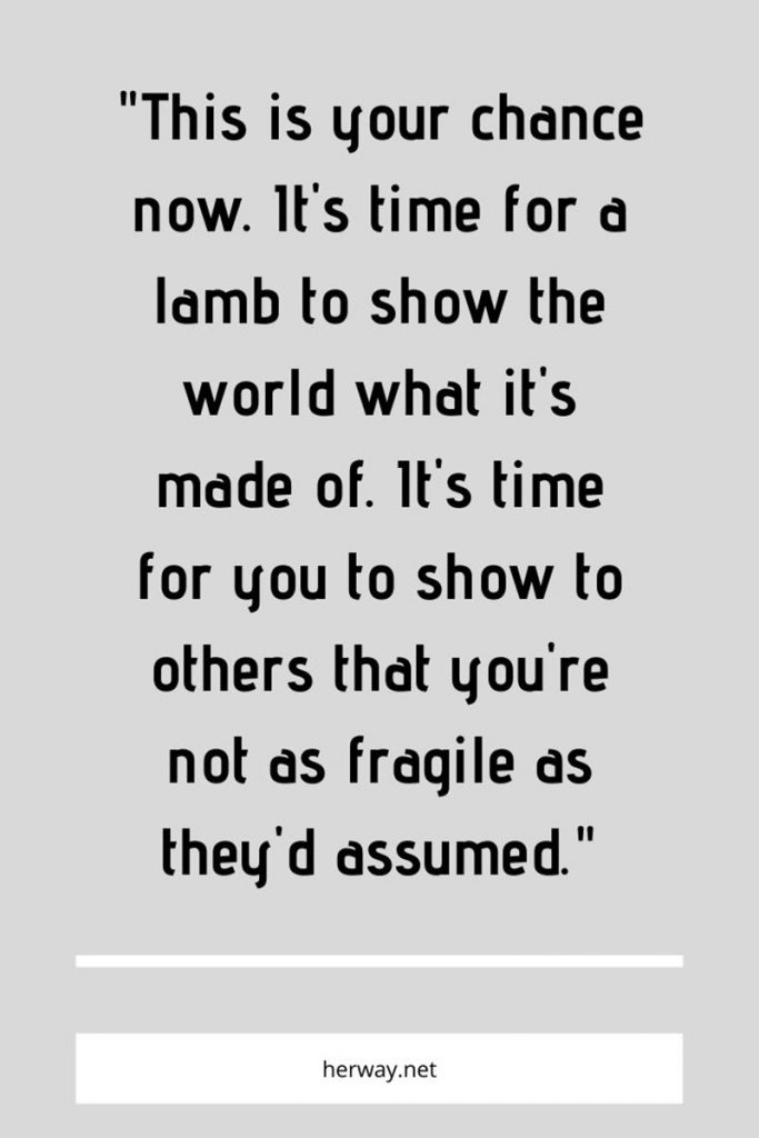 This is your chance now. It's time for a lamb to show the world what it's made of. It's time for you to show to others that you're not as fragile as they'd assumed.