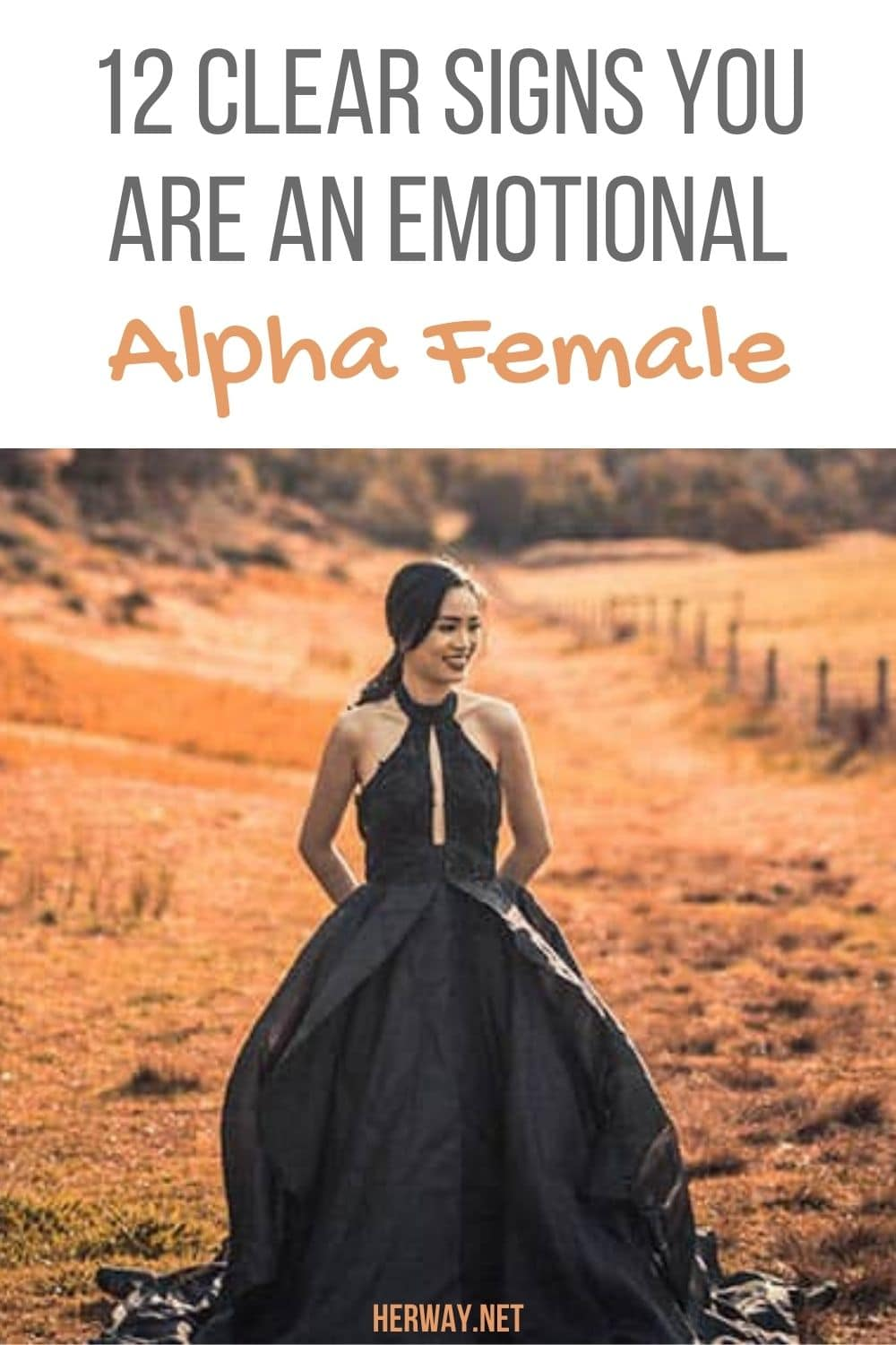 12 Clear Signs You Are An Emotional Alpha Female