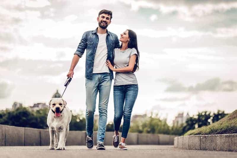 happy couple walking with dog
