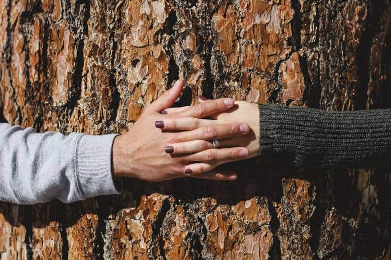 Man and woman hand holding hands around tree
