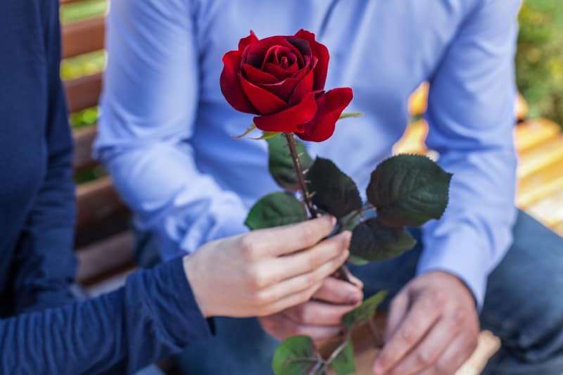 man giving rose to his soulmate
