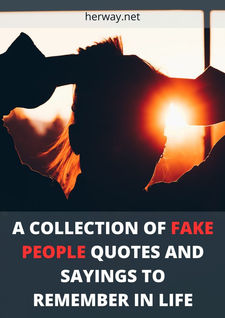 A Collection Of Fake People Quotes And Sayings To Remember In Life