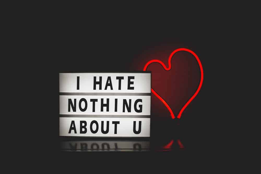 i hate nothing about you love quote with red heart