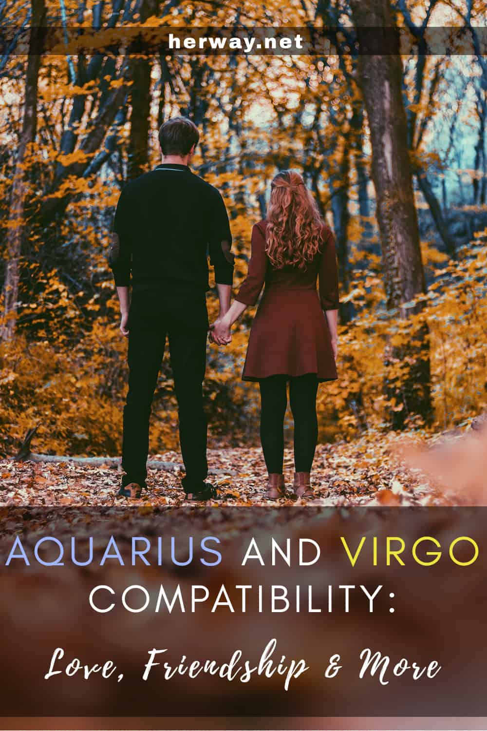 Aquarius And Virgo Compatibility Love, Friendship and More Pinterest