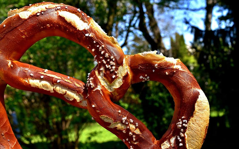 a big pretzel in focus with green tree leaves behind