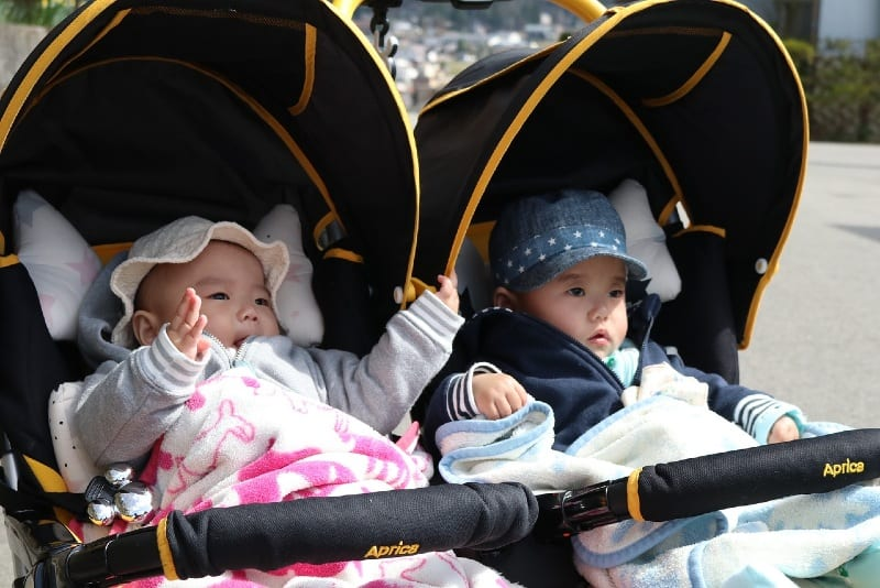twin brother and sister in stroller outdoor