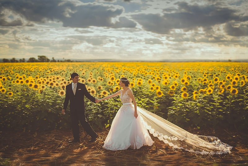 bride and groom walking in front of sunflower field