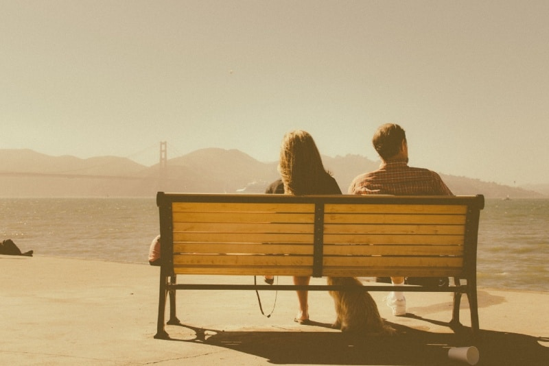 man and woman sitting on wooden bench looking at water