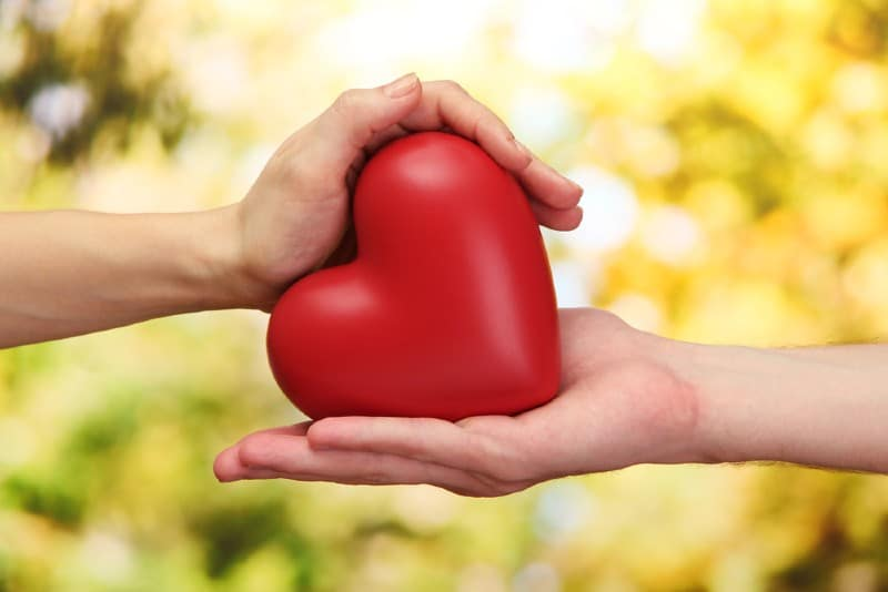 Hands of man and woman holding heart
