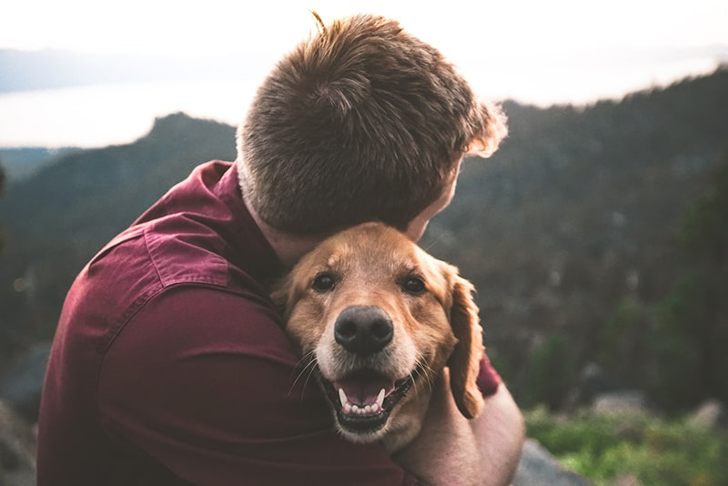 man hugging the dog in the nature