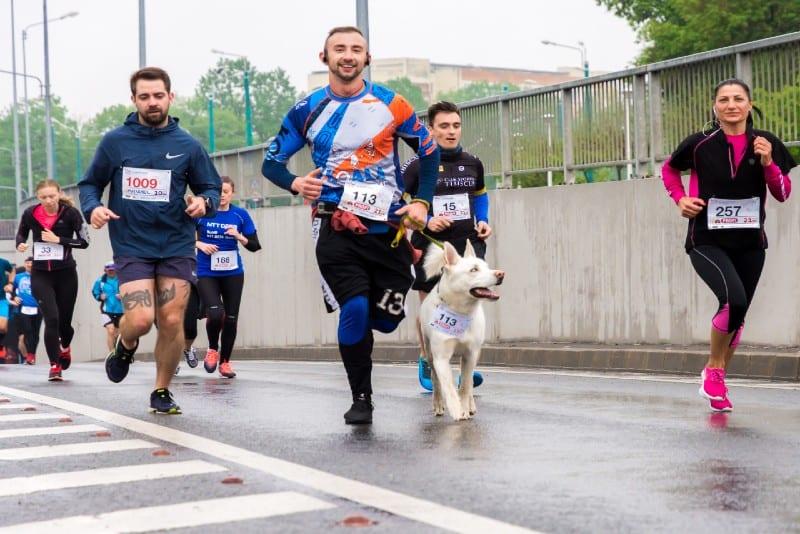 people running marathon during daytime