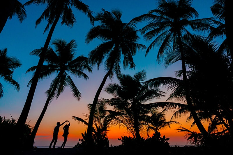 silhouette of man and woman beside trees during sunset