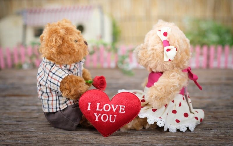 Teddy bears sitting on wood with red heart between them