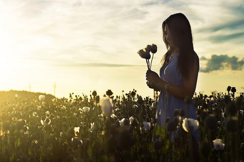 woman holding flowers while standing in the field