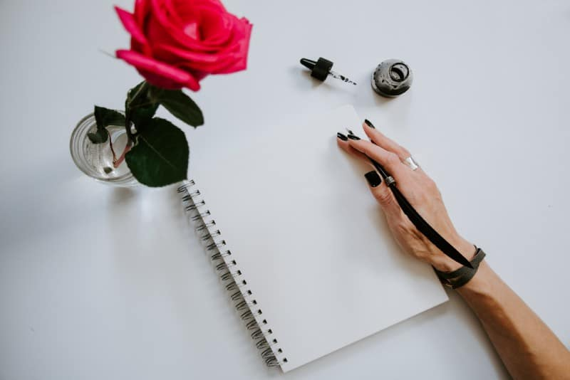 woman holding notebook near red rose