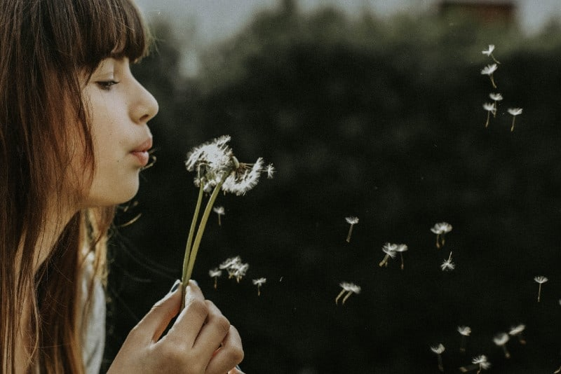 woman blowing dandelions during daytime