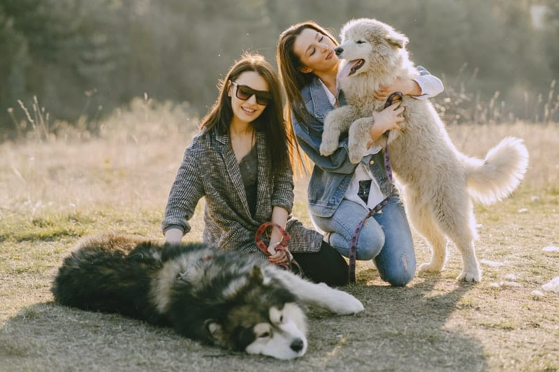 women holding their dogs in the park