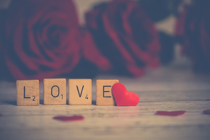 word love made with wooden blocks with roses in backround
