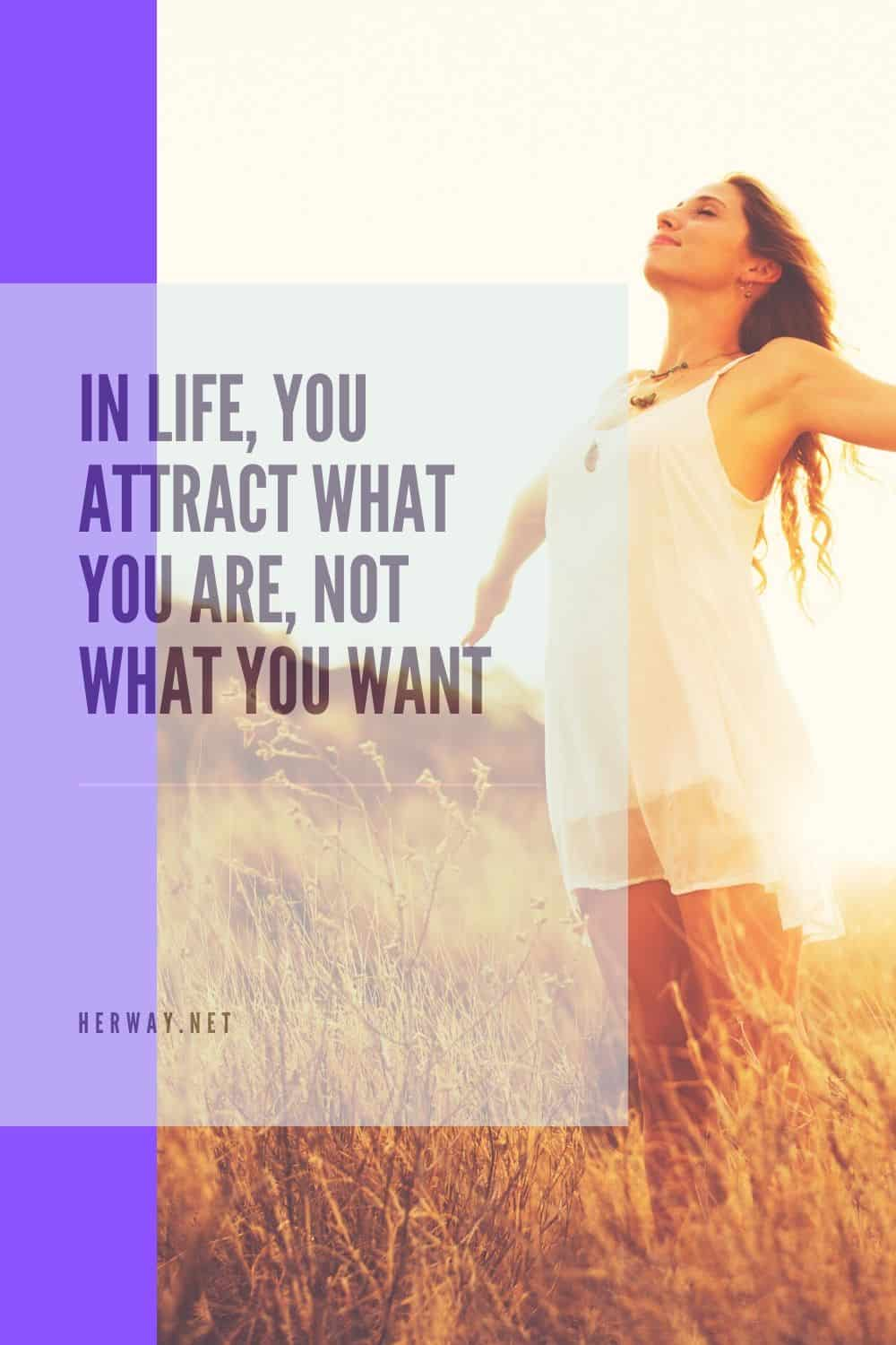 In Life, You Attract What You Are, Not What You Want