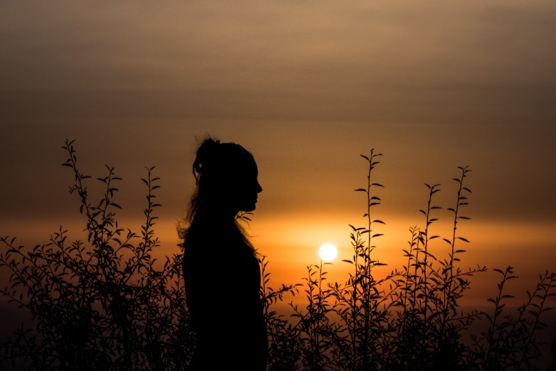woman standing near plants during sunset