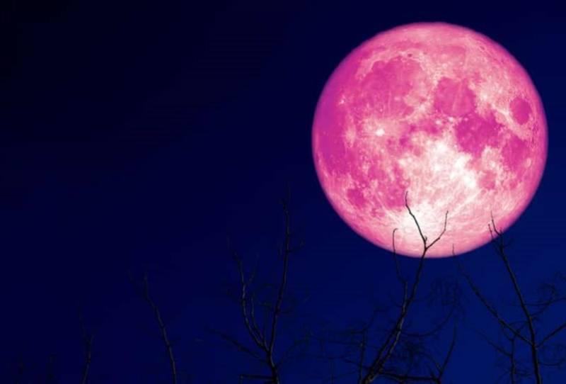 strawberry moon - photo #1