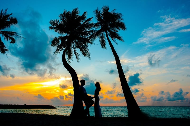 man and woman standing under palm tree during sunset