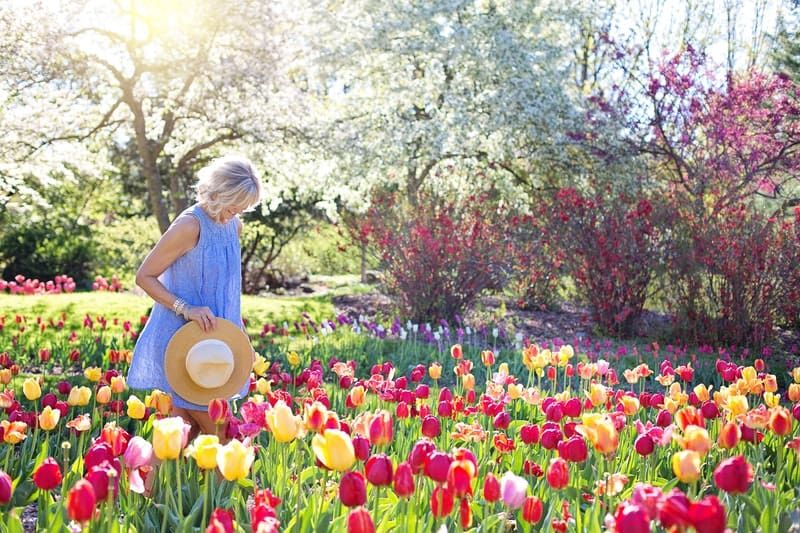 woman enjoying the flower garden with different bright colored flowers