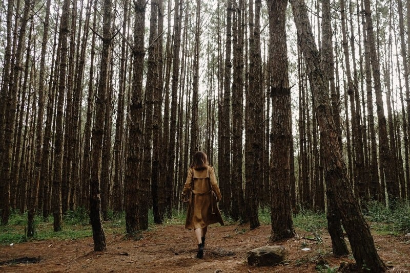 woman in brown coat walking through forest