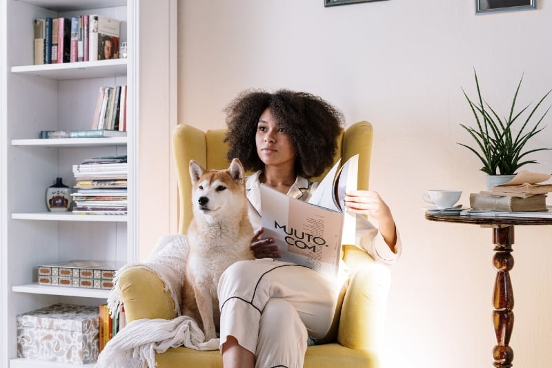 woman sitting on yellow armchair near dog