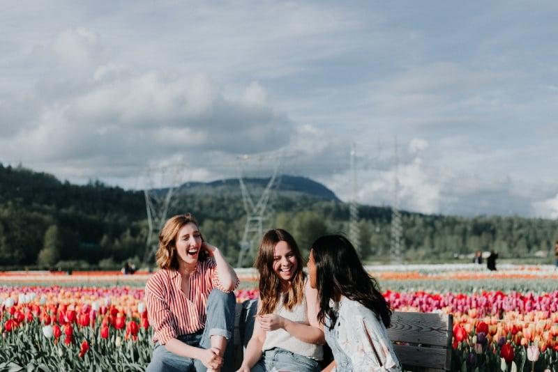 three women sitting on bench near field of tulips