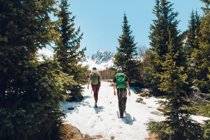man and woman with backpacks walking in forest