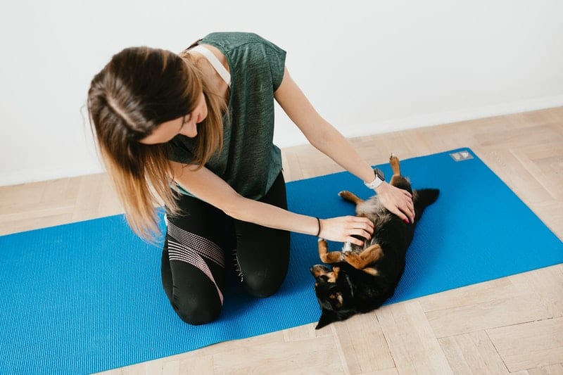 woman playing with a little puppy in a blue yoga mat