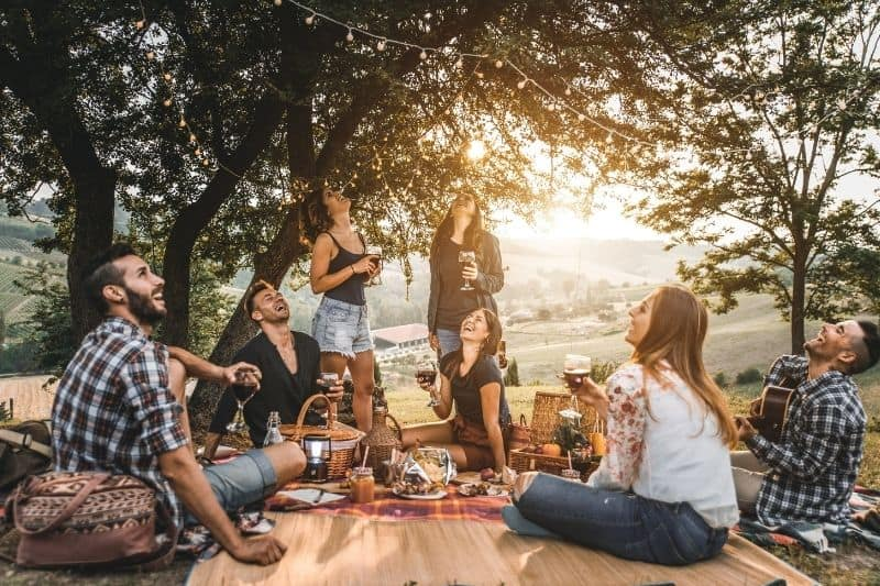 group of friends on picnic at the park under a tree with food and wine on the mat