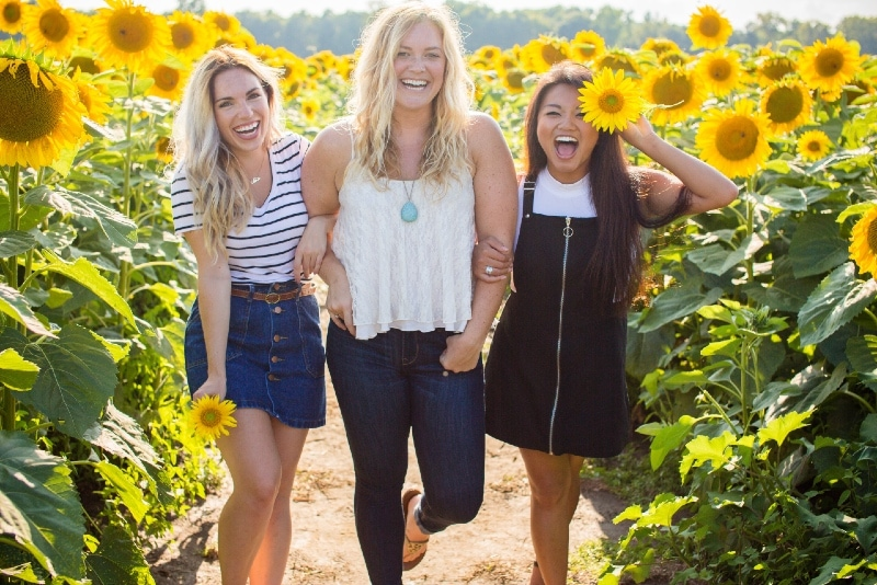three women holding hands while standing between sunflowers