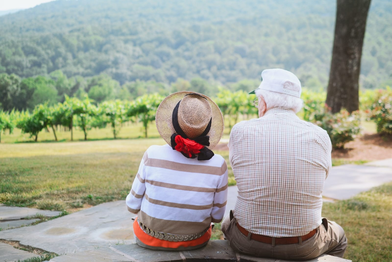 man and woman sitting outdoor looking at trees