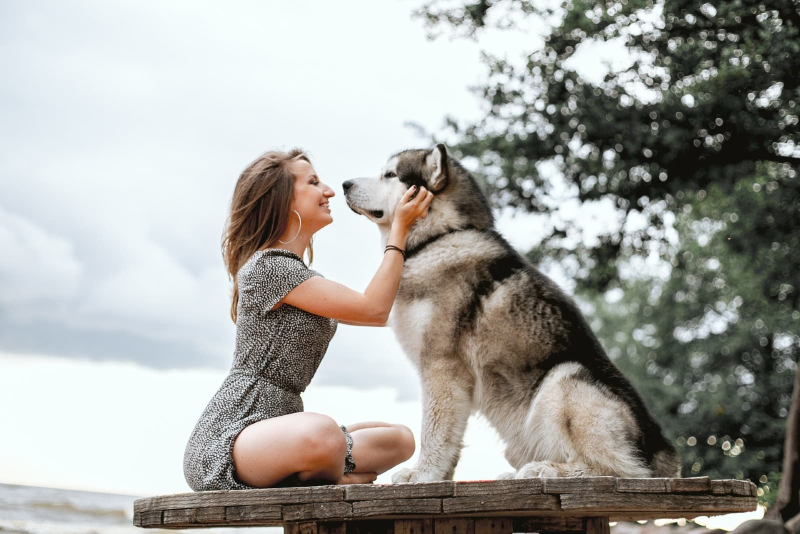 woman petting dog while sitting outdoor