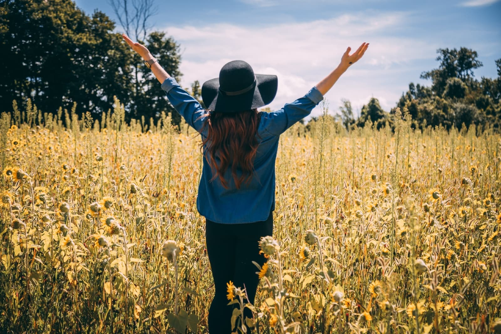 woman raising both hands while standing in sunflower field