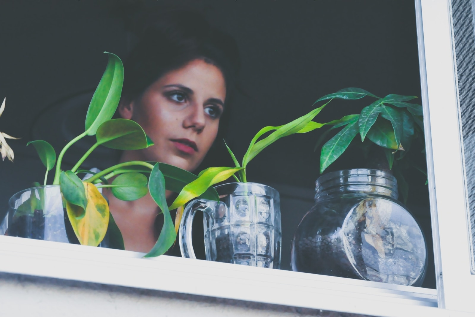woman standing near window pane with glass vases