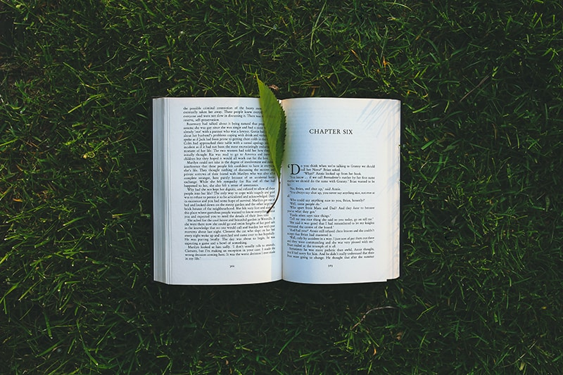 opened book on green grass