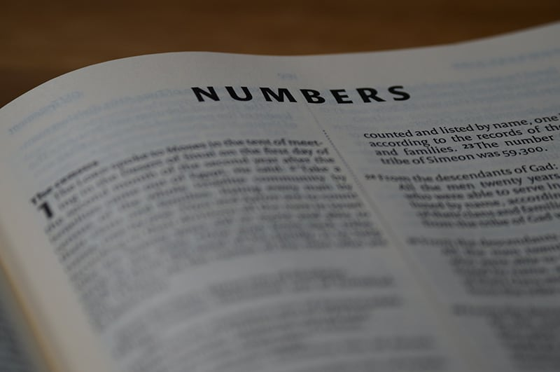opened book with title Numbers on it